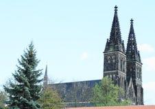 圣皮特圣徒・彼得和保罗大教堂  免版税库存照片