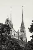 圣皮特圣徒・彼得和保罗著名大教堂在布尔诺,摩拉维亚,捷克r 库存照片