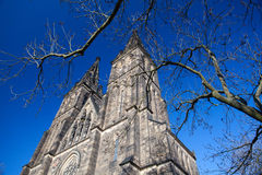圣皮特圣徒・彼得和圣保罗,布拉格大教堂  免版税图库摄影
