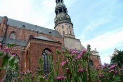 圣皮特圣徒・彼得夏时的` s教会 看法通过花 重点 图库摄影