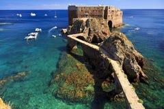 圣约翰堡垒浸礼会教友在Berlenga海岛,葡萄牙 库存照片