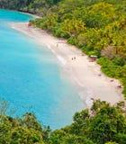 圣约翰岛, USVI -树干海湾海滩 免版税库存照片