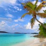 圣约翰美国维尔京群岛 库存照片