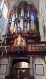 圣约翰s大教堂, s斯海尔托亨博斯,荷兰 免版税图库摄影