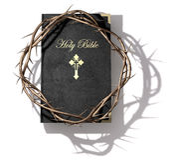 圣经和铁海棠 免版税库存图片
