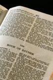 圣经埃丝特系列 免版税库存照片