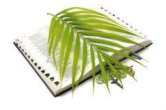 圣经掌上型计算机念珠星期天 免版税图库摄影