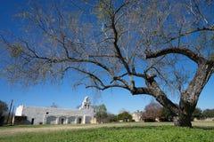 圣胡安misson在圣安东尼奥behing一棵大树的得克萨斯 库存图片