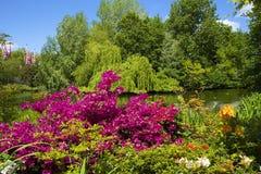 圣詹姆斯公园在伦敦,英国 免版税库存图片