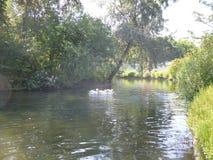 圣詹姆斯公园的湖在伦敦 图库摄影