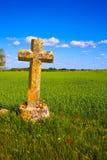 圣詹姆斯十字架帕伦西亚麦田方式  图库摄影