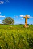 圣詹姆斯十字架帕伦西亚麦田方式  免版税库存照片