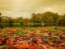 圣詹姆斯的Park湖在秋天 免版税库存照片