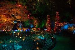 圣诞前夕在Butchart庭院里,维多利亚, BC 免版税库存照片