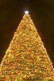圣诞前夕点燃晚上圣诞老人结构树 库存图片