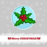 圣诞卡模板用霍莉莓果 免版税库存图片