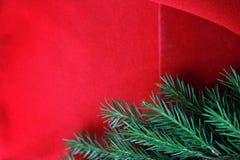 圣诞卡片背景 新年假日 圣诞节静物画 r r 绿色杉木分支 库存照片