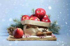 圣诞卡用红色苹果 免版税库存图片