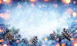 圣诞卡-斯诺伊与杉木锥体的冷杉分支