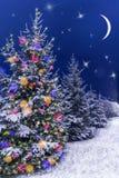 圣诞夜明信片 圣诞节装饰装饰新家庭想法 圣诞节我的投资组合结构树向量版本 免版税库存图片