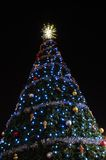 圣诞夜结构树 免版税库存照片