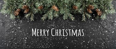 圣诞快乐印刷在与冷杉分支,杉木锥体框架的黑暗的假日背景  免版税库存照片