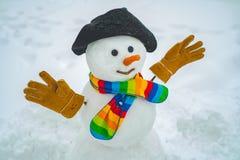 圣诞快乐和新年快乐贺卡与拷贝空间 雪人在冬天帽子和围巾站立有红色的 库存照片