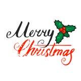 圣诞快乐在白色隔绝的手字法 蓝色云彩图象彩虹天空向量 免版税库存图片