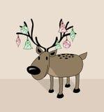 圣诞快乐滑稽的驯鹿 图库摄影