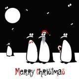 圣诞快乐滑稽的鸟企鹅 库存照片