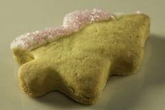 圣诞树丝毫砂糖 免版税库存照片