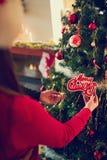 圣诞树为圣诞节时间做准备 免版税库存照片