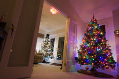 圣诞树二 库存照片