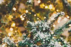 圣诞树假日背景,特写镜头 库存图片