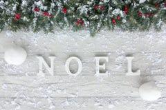 圣诞树冷杉、红色莓果、雪球和雪 库存图片