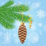 圣诞树分支与一个玩具的由锥体 库存图片