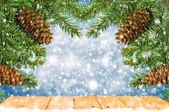 圣诞树分支与在蓝色背景的锥体 免版税库存图片