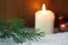 圣诞树分支在雪的 库存照片
