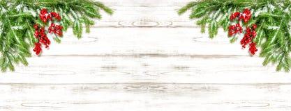 圣诞树分支欢乐装饰假日横幅 免版税库存图片