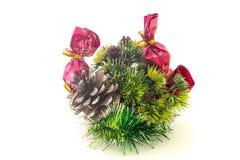 圣诞树分支,在白色的杉木锥体 免版税库存照片