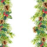 圣诞树分支,槲寄生 无缝的框架 水彩 免版税库存图片