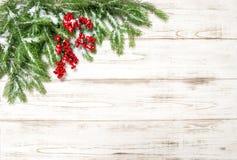 圣诞树分行用红色浆果 男孩节假日位置雪冬天 免版税库存图片