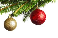 圣诞树分行 免版税库存照片
