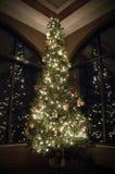 圣诞树反射 免版税库存图片