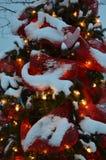 圣诞树和光、冷杉和雪 库存图片