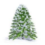 圣诞树和新鲜的雪 库存照片
