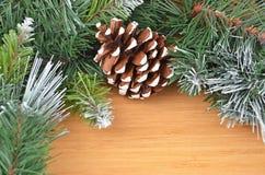 圣诞树和球果 免版税图库摄影