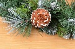 圣诞树和球果 免版税库存照片