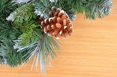 圣诞树和球果 图库摄影