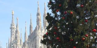 圣诞树和米兰大教堂在意大利 库存照片
